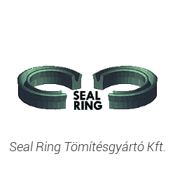 Seal Ring T�m�t�sgy�rt� Kft.
